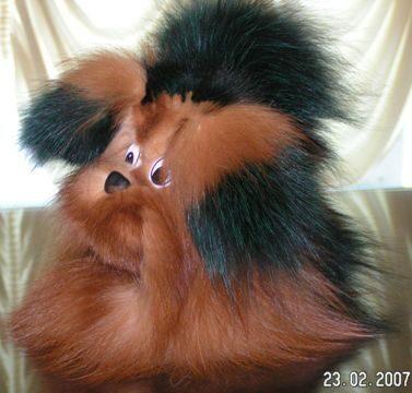цвета меха норки: burda шапкаушанка, фото зимних шапок.